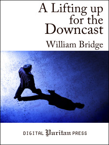 Book Cover: A Lifting Up For The Downcast