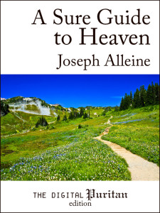 Book Cover: A Sure Guide to Heaven